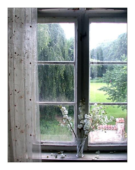 White_Window