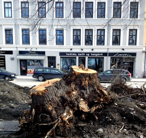 På kafébesøk i Hamar. I gatene rundt pågår det mye arbeid, noe som også har gått utover trærne.